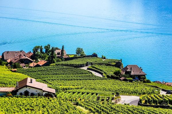 wina-z-poludnia-europy