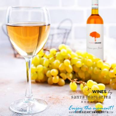 Mala winnica Pasion wines (5)